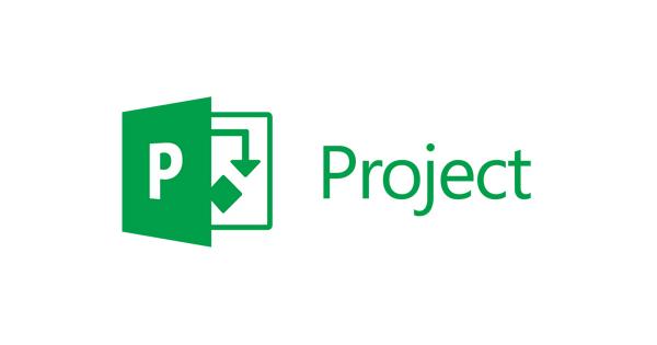 Project Server installieren